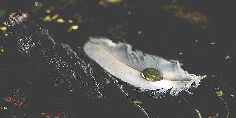 Orações celtas para se conectar com as fadas nas refeições, na hora de dormir e fazer oferendas.